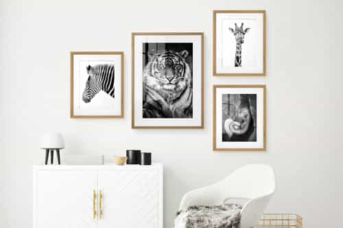 Light pink framed photos